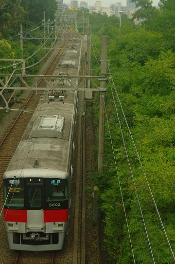 2019.7.5 山陽電気鉄道本線 山陽須磨-須磨浦公園 5700系直通特急1.JPG